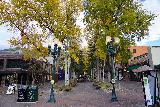 Aspen_052_10182020 - Looking towards another tree-lined pedestrian arcade in Aspen while trying to walk off our post-dinner food