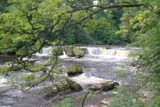 Aysgarth_Falls_016_08162014 - Our first look at the Upper Aysgarth Falls as we approached it