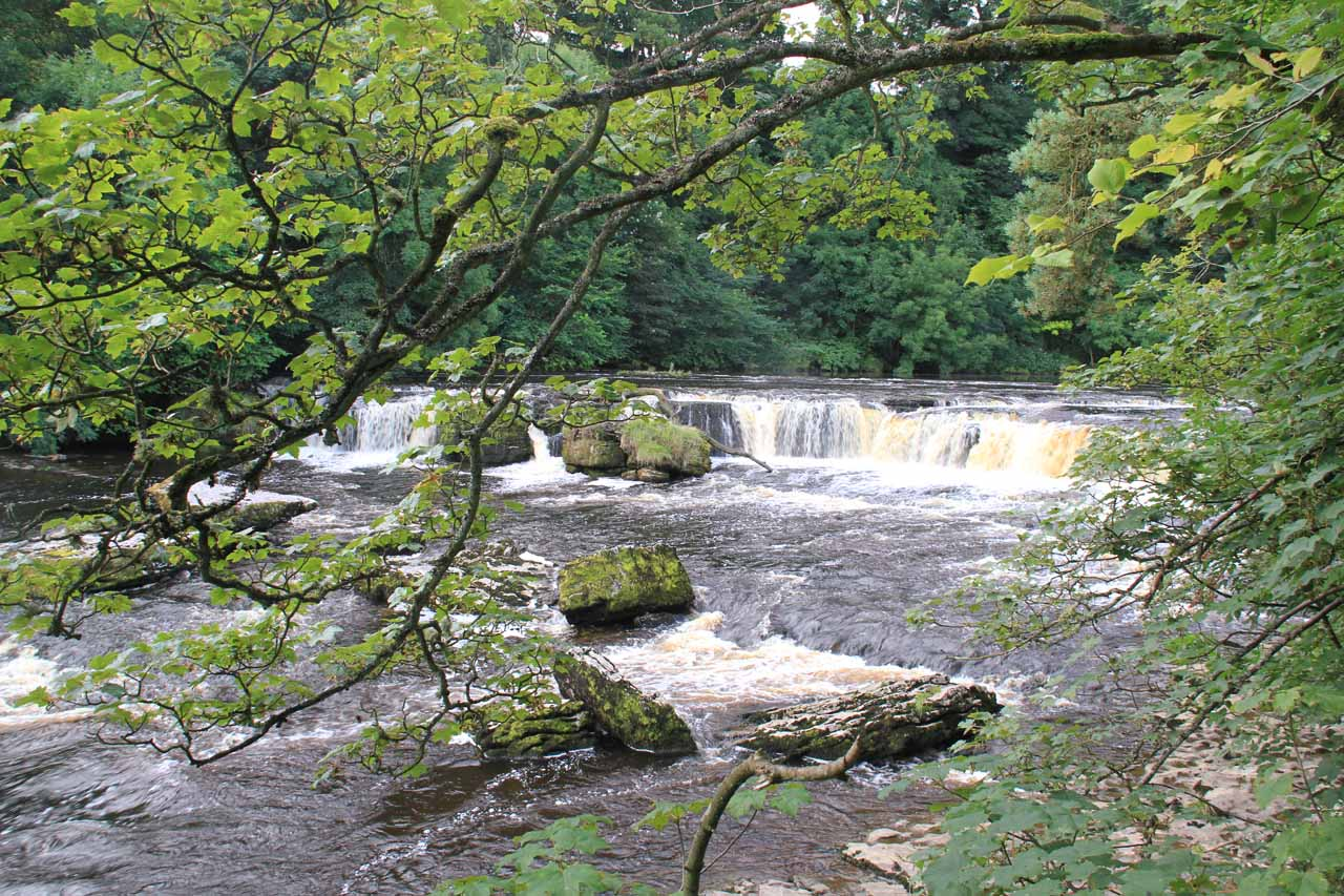 Our first look at the Upper Aysgarth Falls