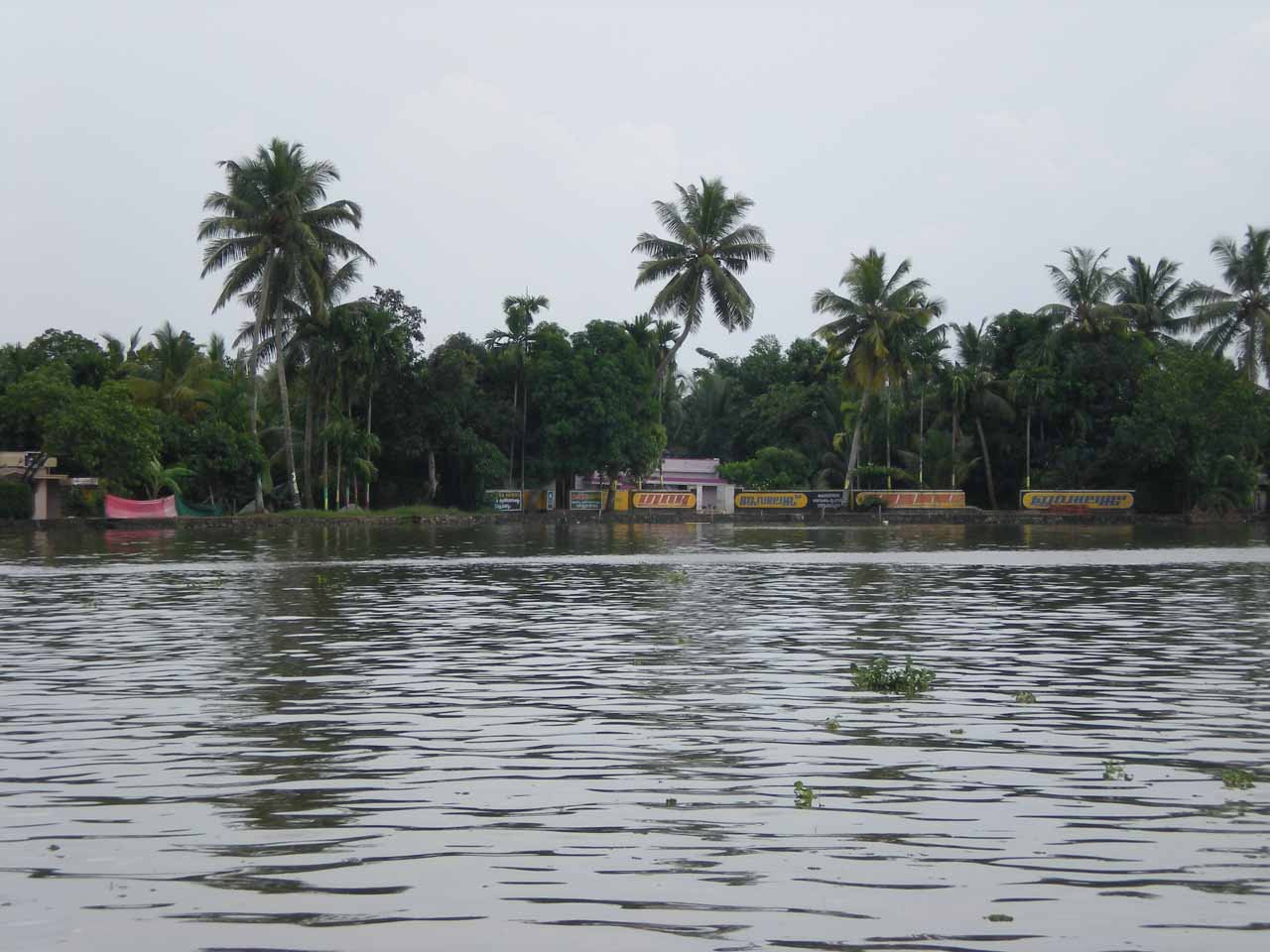 Within the backwaters looking out from the houseboat