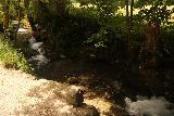Bad_Urach_Waterfall_027_06232018 - Looking down at some mini cascades on the Bruhlbach Creek alongside the Urach Waterfall Trail