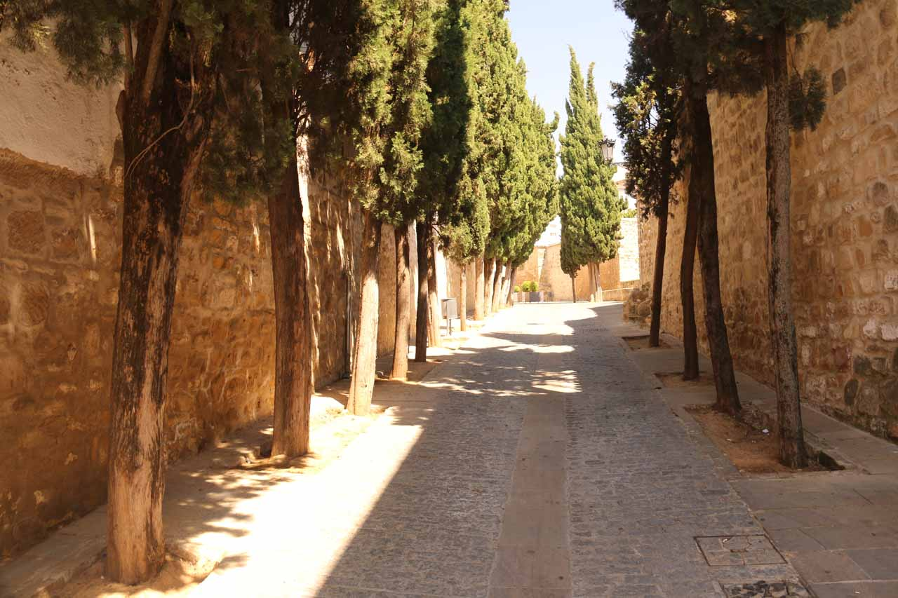 Walking along the Obispo Romero, which had welcome shade at this time of the hot afternoon
