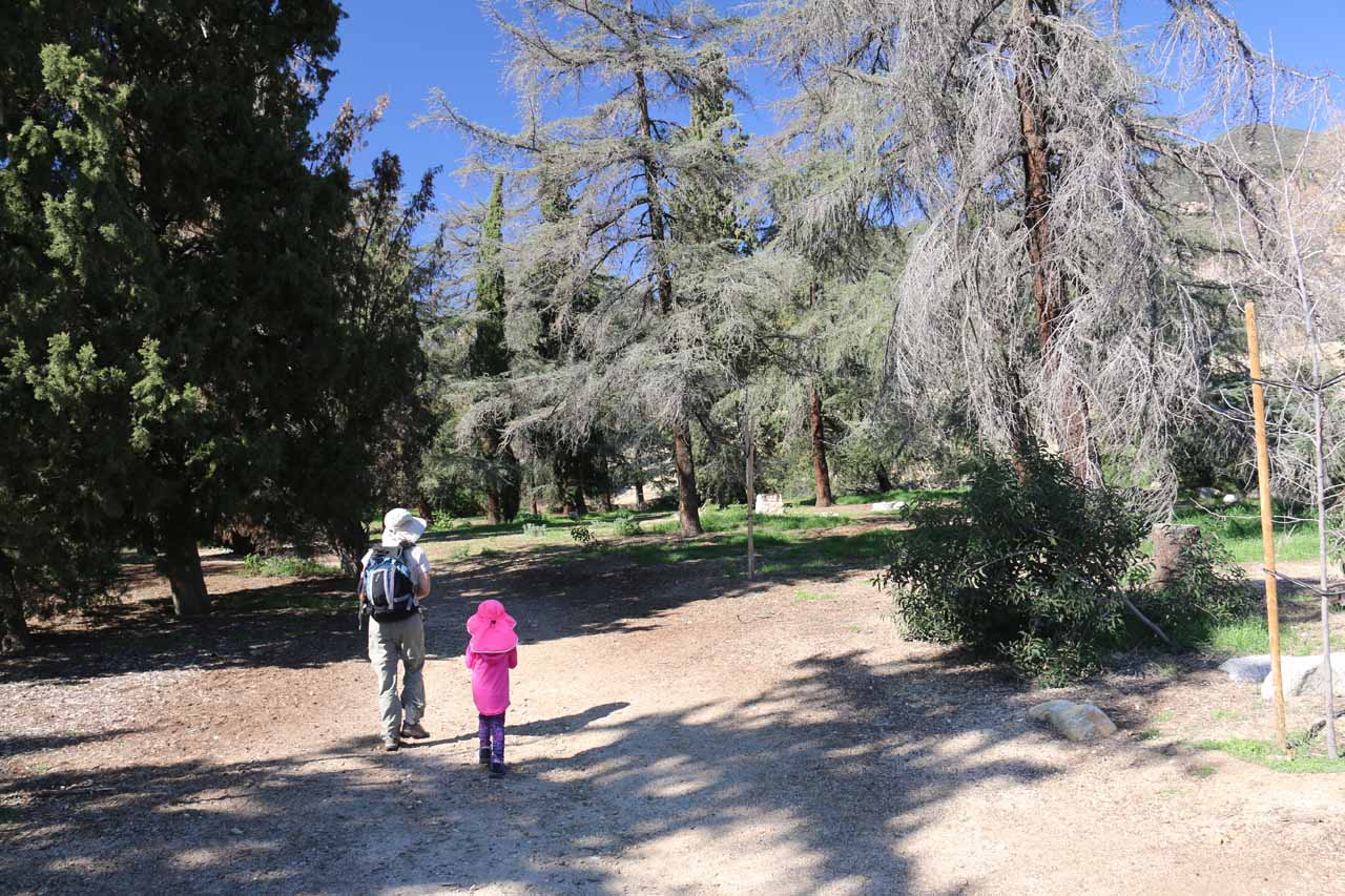 Tahia and Julie walking on the trail, which initially passed through more picnic grounds