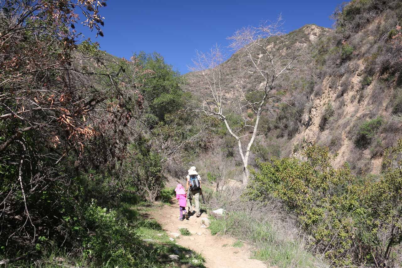 Julie and Tahia now hiking on the main trail where Bailey Canyon Falls is shared with the trail to Jones Peak