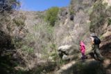 Bailey_Canyon_050_02062016 - Julie and Tahia continuing on the narrow and more overgrown scramble up to Bailey Canyon Falls