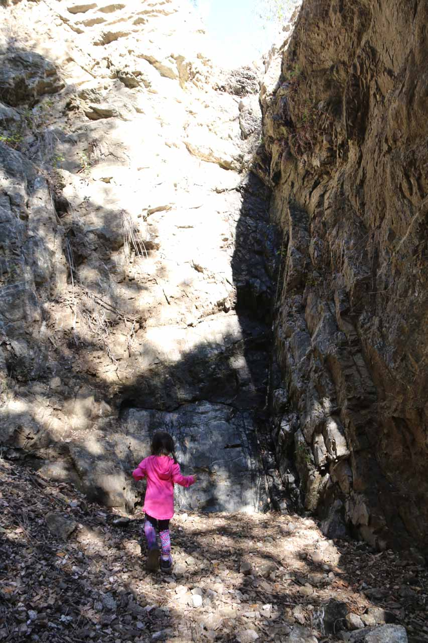 Tahia examining the rock wall where the waterfall should be a little more closely