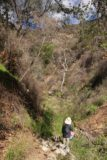 Bailey_Canyon_Falls_030_01212017 - Continuing along Bailey Canyon as Tahia was figuring out how to get through one obstacle after another