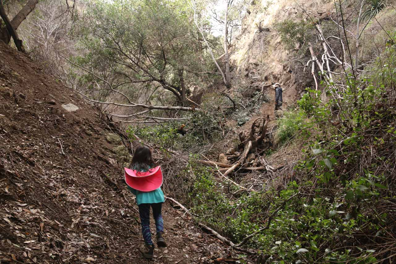 This landslide obstacle was a little tricky to cross until we backtracked and found a much easier trail to get around it