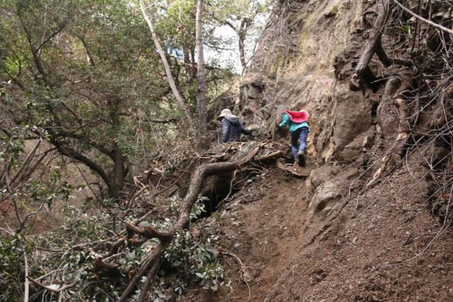 Bailey_Canyon_Falls_036_01212017 - Julie and Tahia going around one of the unexpected landslide or fallen-tree obstacles within Bailey Canyon