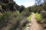 Bailey_Canyon_Falls_080_01212017 - Context of the Bailey Canyon Falls Trail and the mostly dry stream to the left