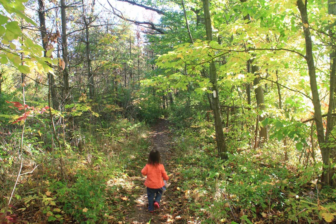 Tahia walking on the Bruce Trail
