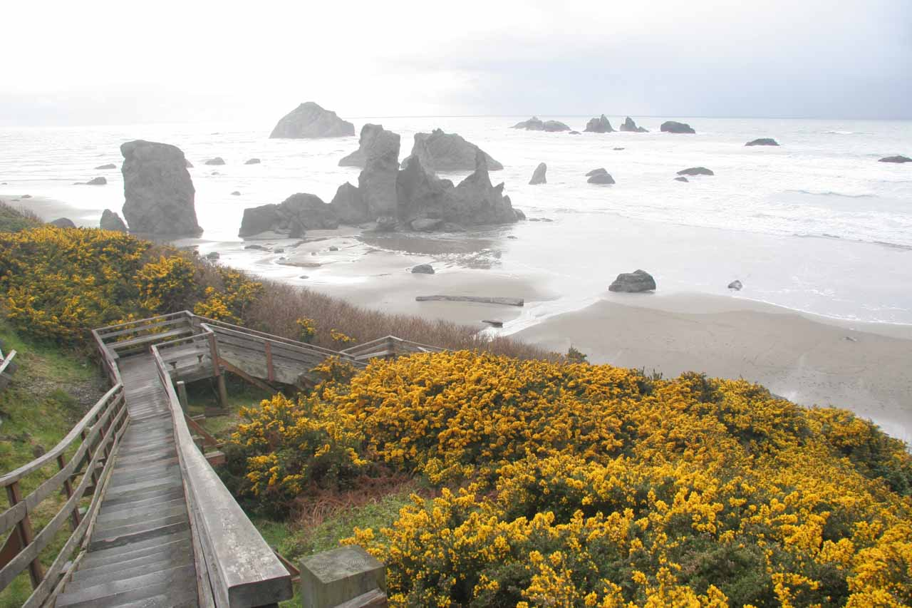 Bandon Beach, which was further south along the Oregon Coast from Coos Bay, was the reason we stumbled upon Golden Falls