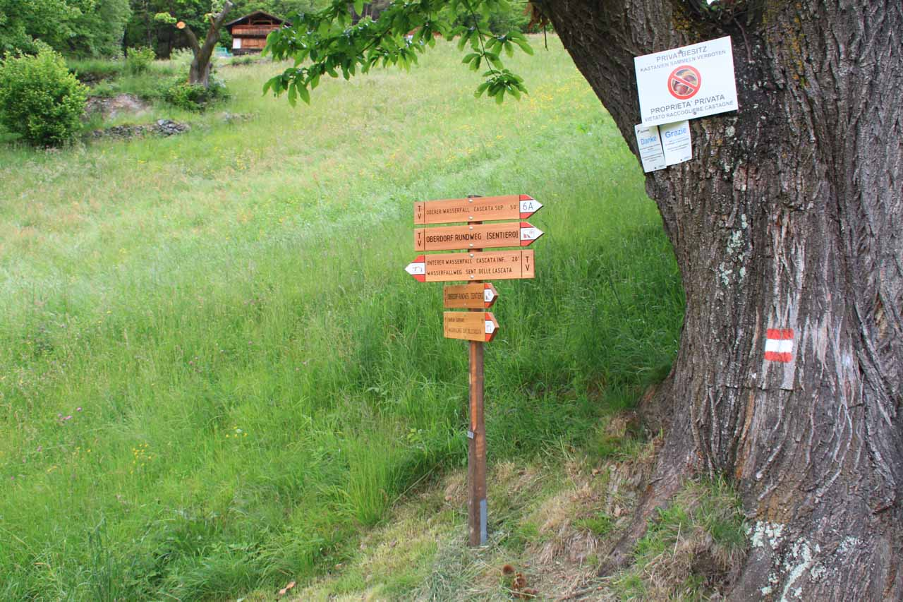 Confusing series of signs as landowners were claiming that some of the paths were trespassing through private property