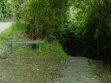 Barrs_Falls_001_12012004 - At the trailhead for Barrs Falls