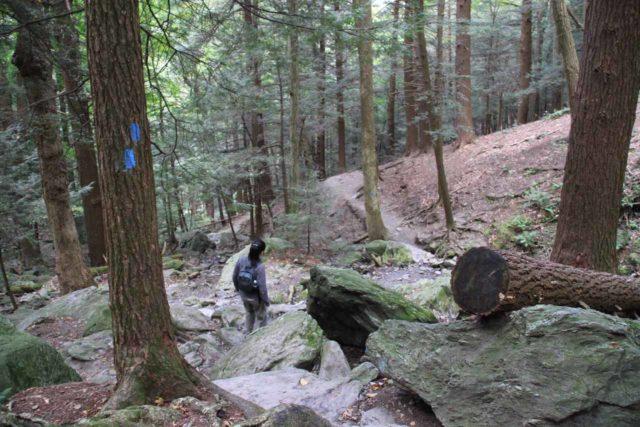 Bash_Bish_Falls_017_09292013 - Descending on the trail to Bash Bish Falls on the Massachusetts side