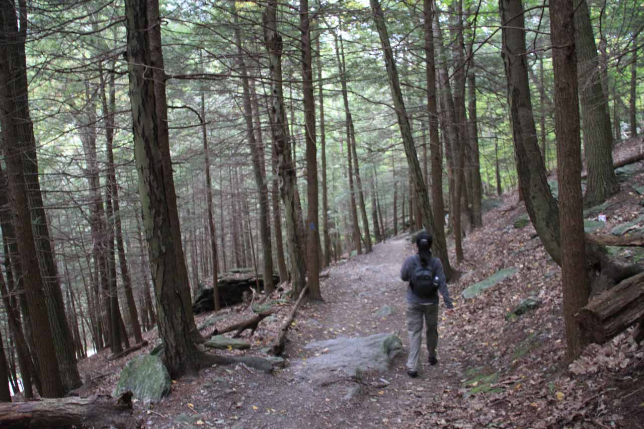 The kind of terrain to expect on the MA trail to Bash Bish Falls