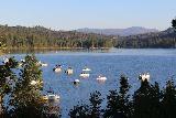 Bass_Lake_035_08172019