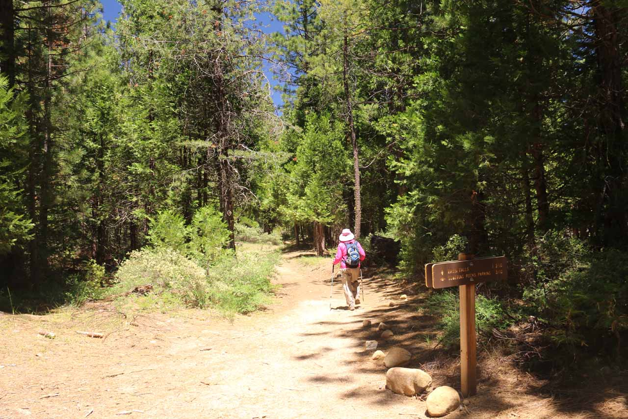 This was the trail junction with the Towering Rocks Trail coming in from the left