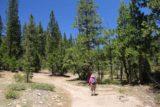Bassi_Falls_044_06222016 - Continuing the hike beyond that intermediate waterfall on Bassi Creek