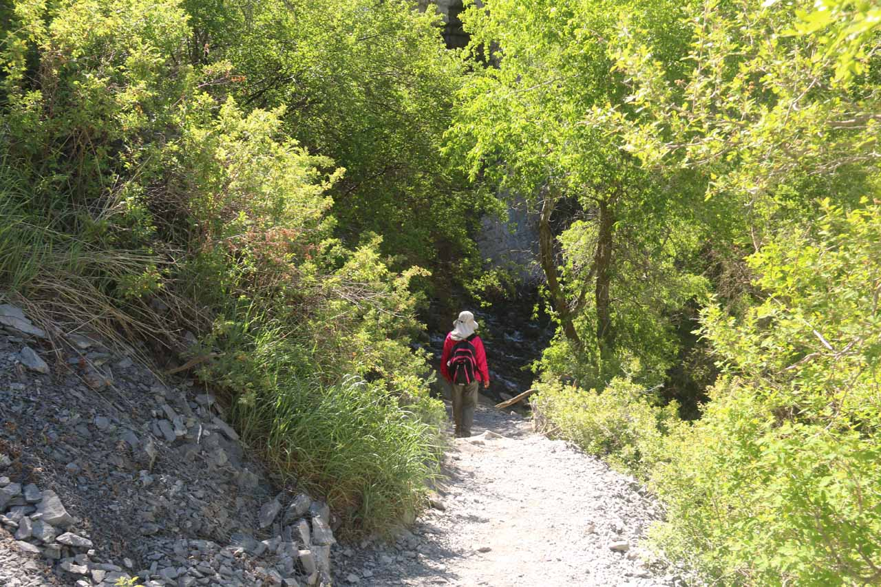 At the same time, Julie and Tahia followed this spur trail down to the base of Battle Creek Falls