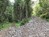 Bear_Creek_Falls_008_iPhone_07232020 - The unsigned trail junction where the narrower trail on the left went towards the former site of the Canton Mine