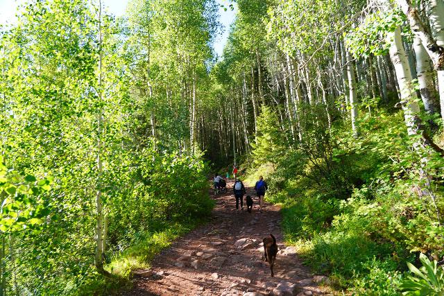 Bear_Creek_Falls_017_07232020 - Even with the early start, there were already quite a few people as well as dogs on the Bear Creek Trail