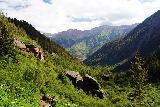 Bear_Creek_Falls_144_07232020 - Looking downstream from the base of Bear Creek Falls