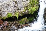 Bear_Creek_Falls_200_07232020 - Looking towards a small alcove by the base of a lower drop of Bear Creek Falls, where a small bird was chilling out