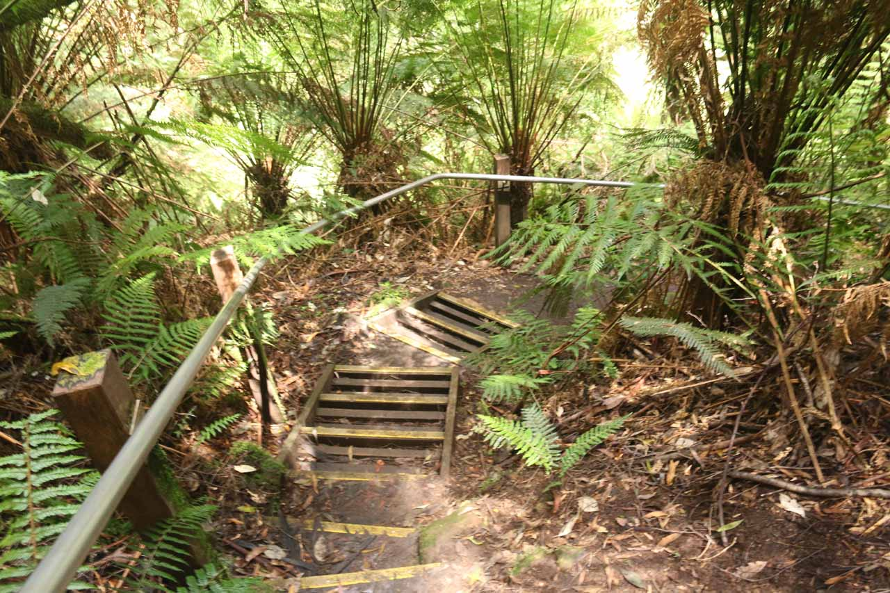 The final descent to the banks of Dappeler Creek and the Beauchamp Falls