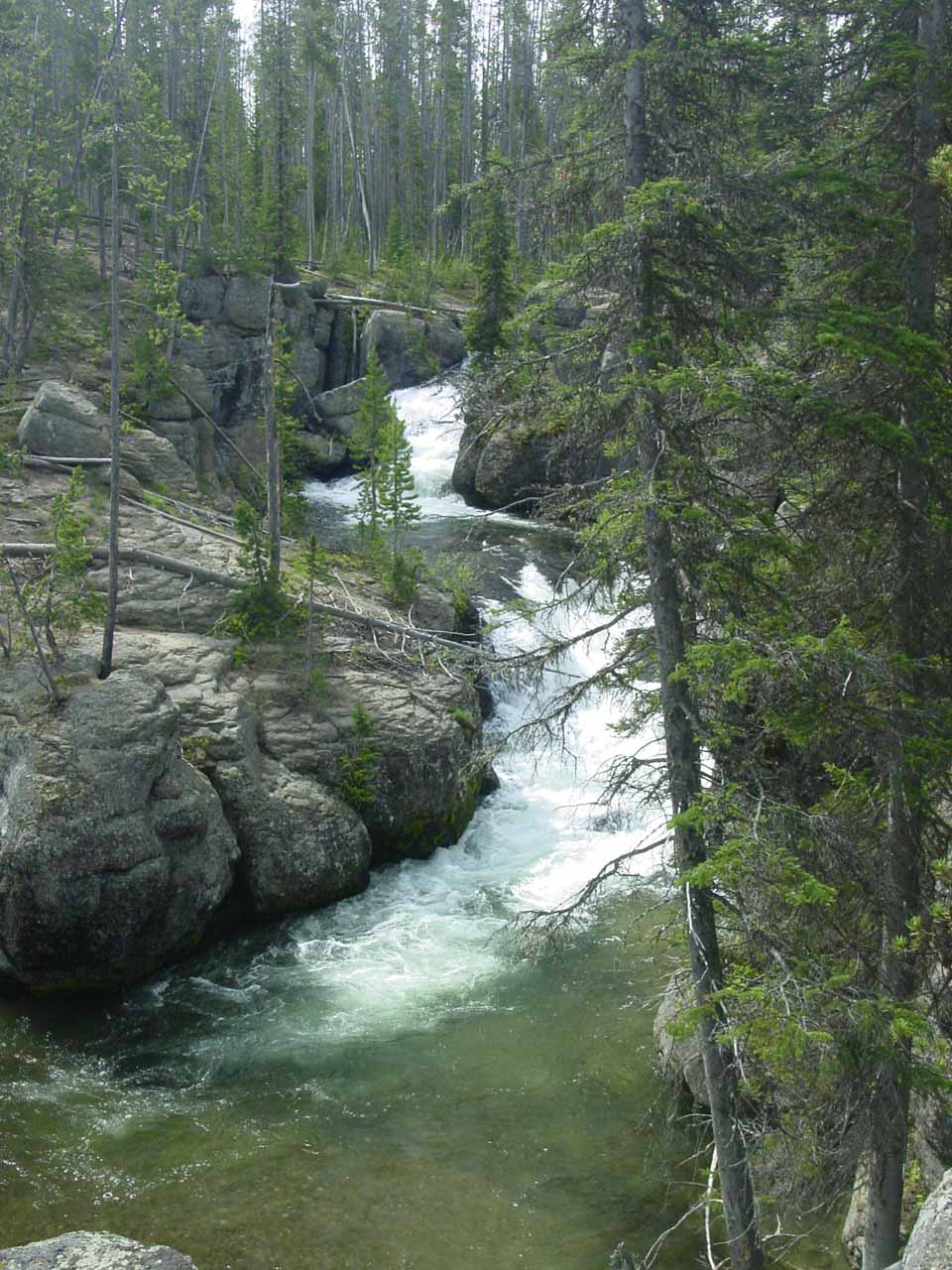 A different series of cascades on Cascade Creek