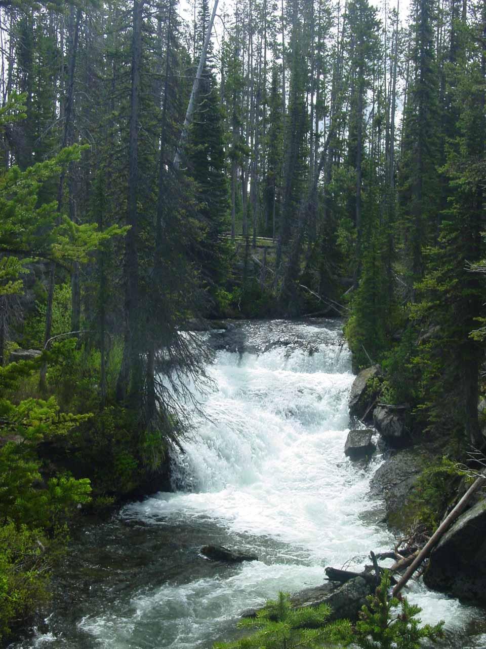 Some cascades seen along Cascade Creek