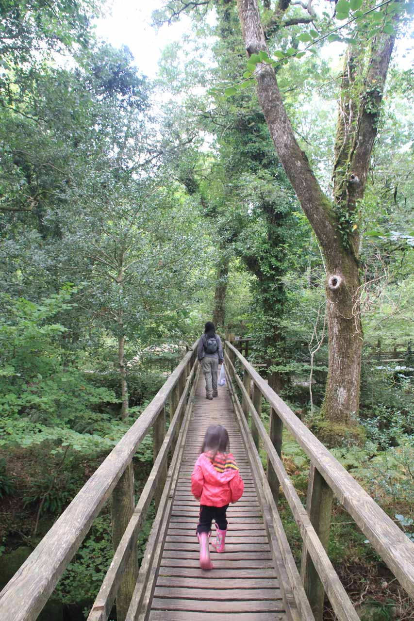 Julie and Tahia crossing the bridge traversing Becka Brook, which I wouldn't recommend doing if the main purpose would be to see Becky Falls