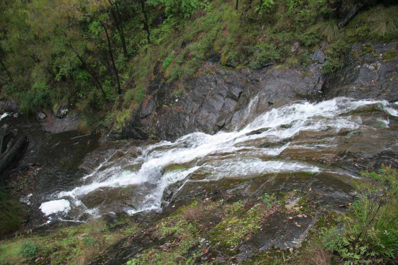 Top down view of Beedelup Falls from the end of the wheelchair path