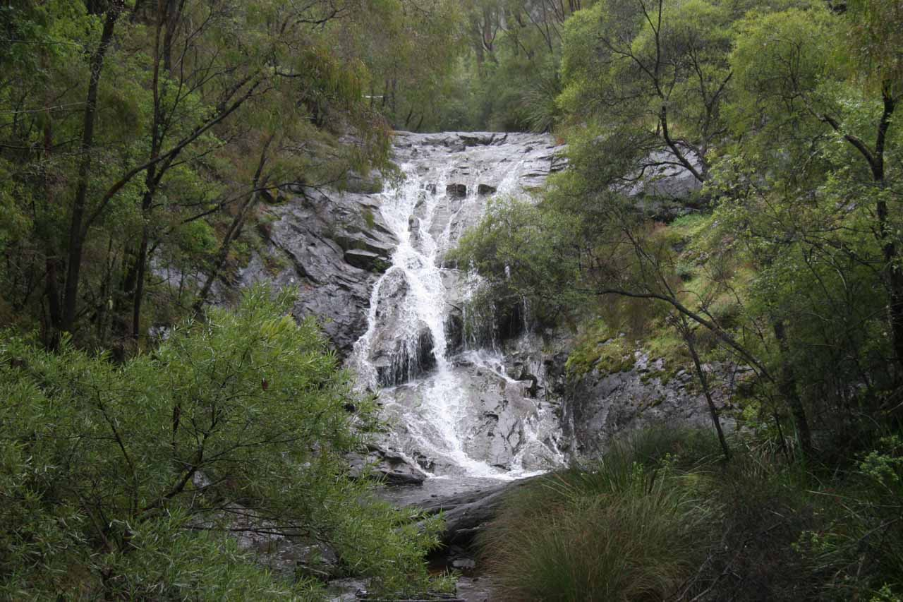 Frontal view of Beedelup Falls from the swinging bridge
