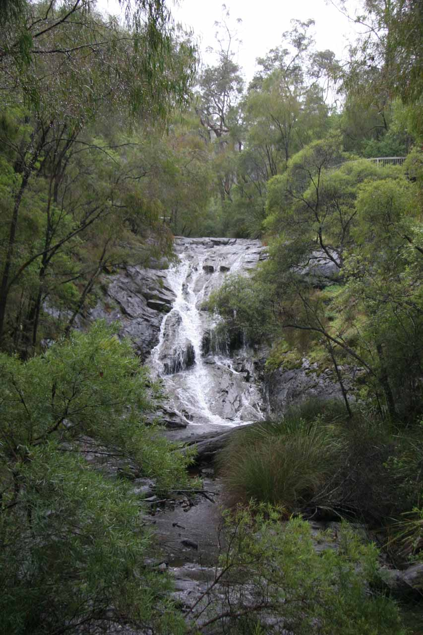 More contextual look at the Beedelup Falls from the suspension bridge