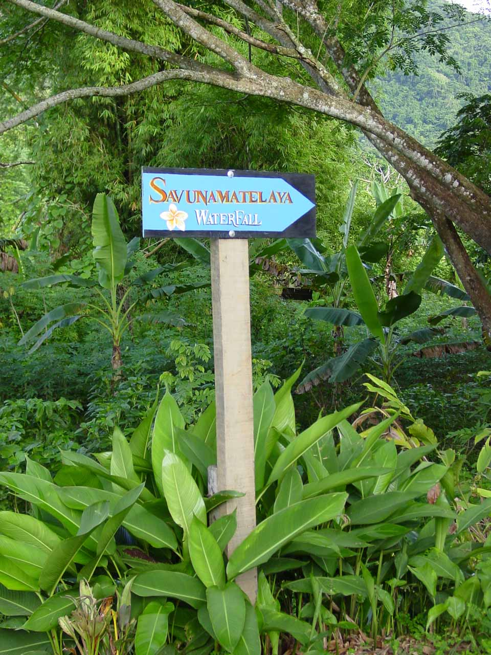The Savunamatelaya Waterfall sign