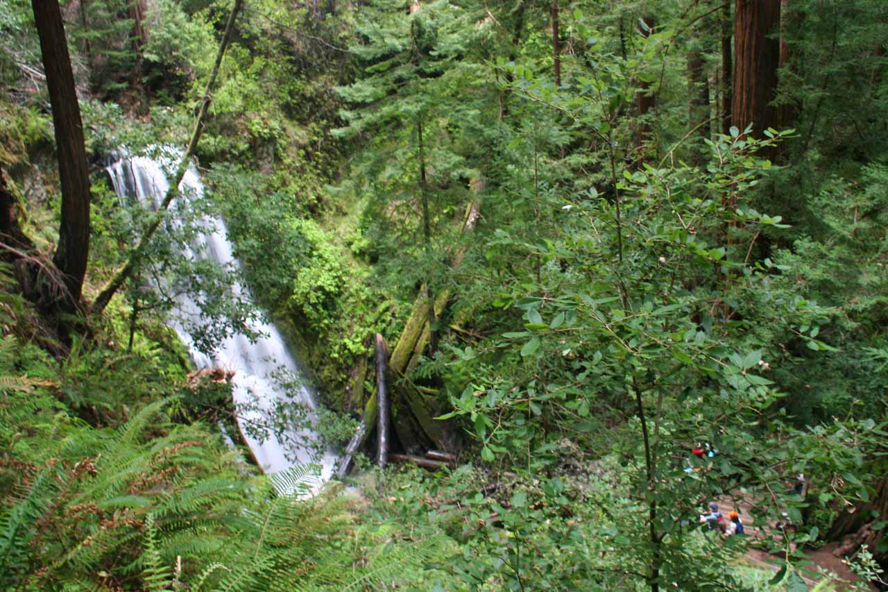 Going beyond Berry Creek Falls