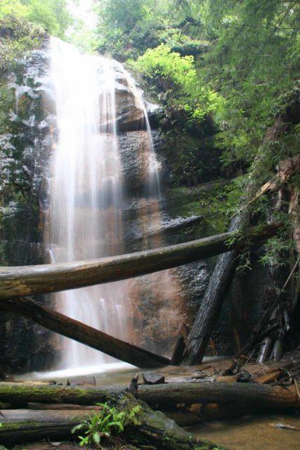 Big_Basin_142_04102010 - Silver Falls