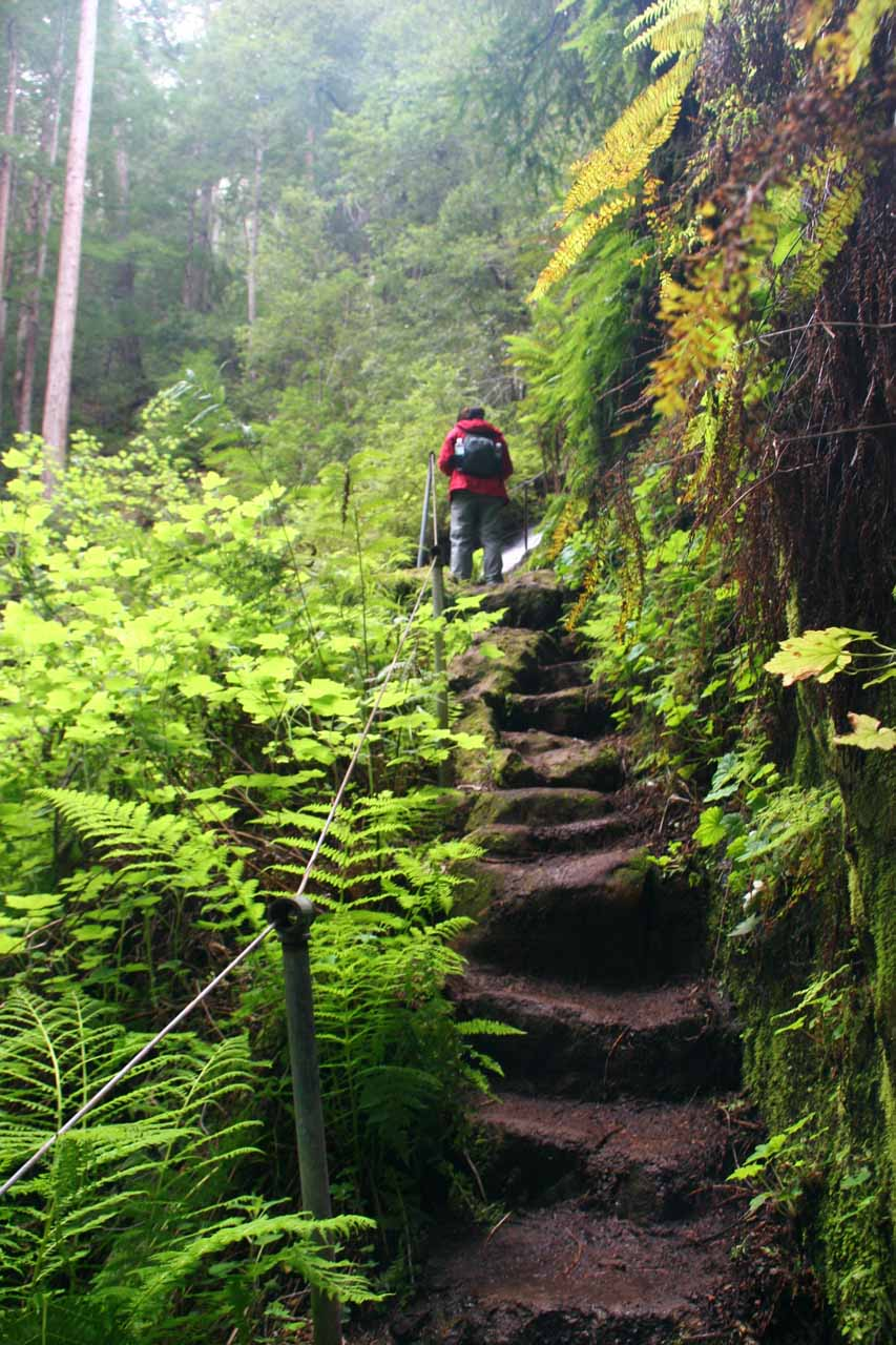 Approaching the top of Silver Falls via rock steps