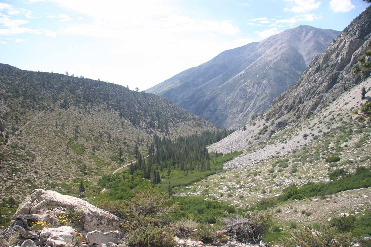 Descending back towards the confluence of North and South Forks of Big Pine Creek