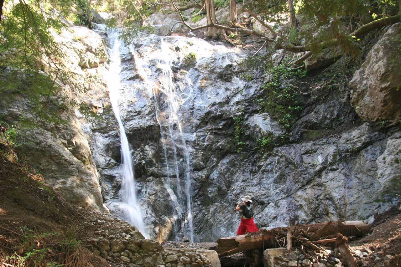 Pfeiffer Falls