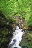 Birks_of_Aberfeldy_013_08222014 - A tiny cascade on the Moness Burn