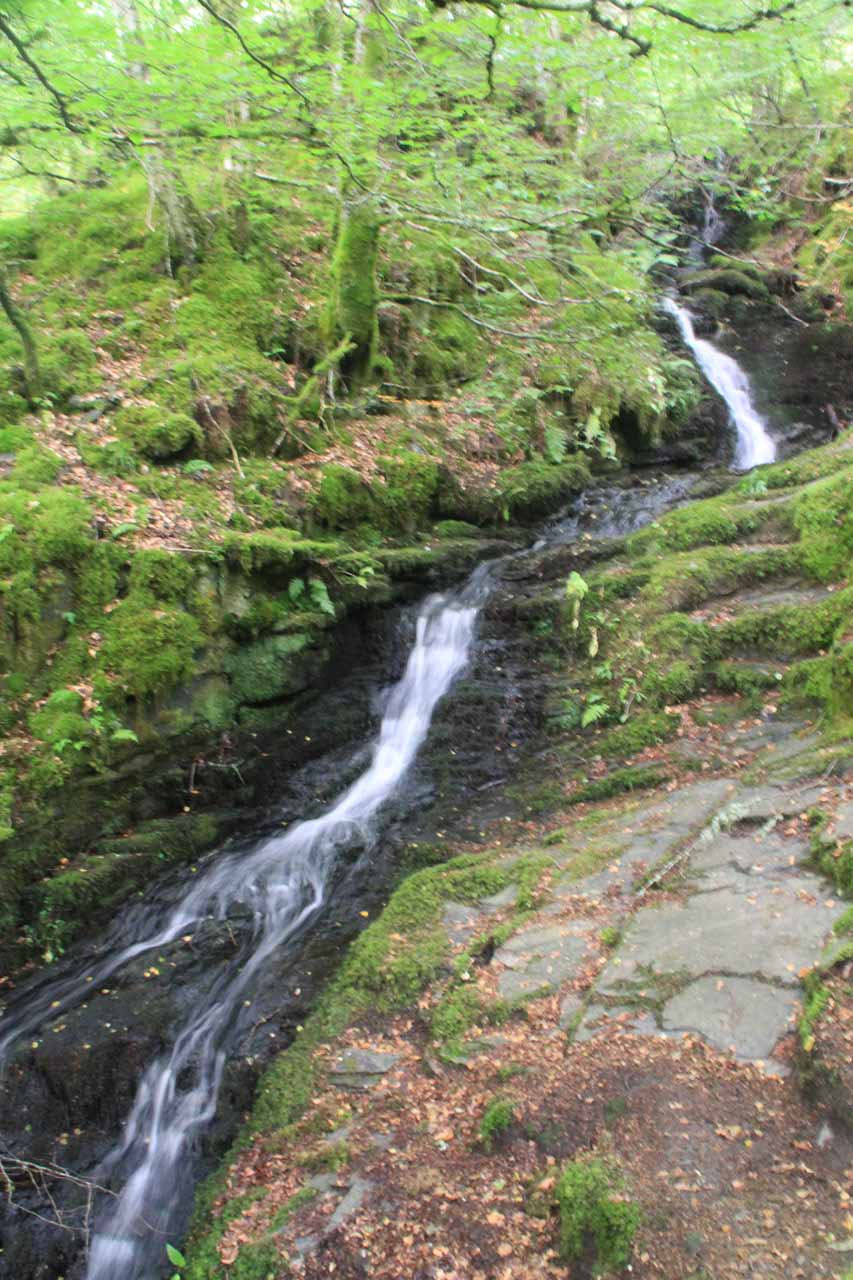 This was another side cascade seen as we continued our climb up through the Birks of Aberfeldy