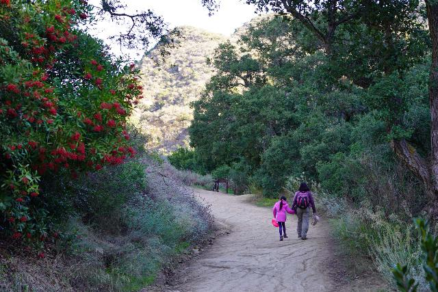 Black_Star_Canyon_Falls_107_01042020 - Julie and Tahia approaching a signed trail junction where we left Black Star Canyon Road and entered Black Star Creek