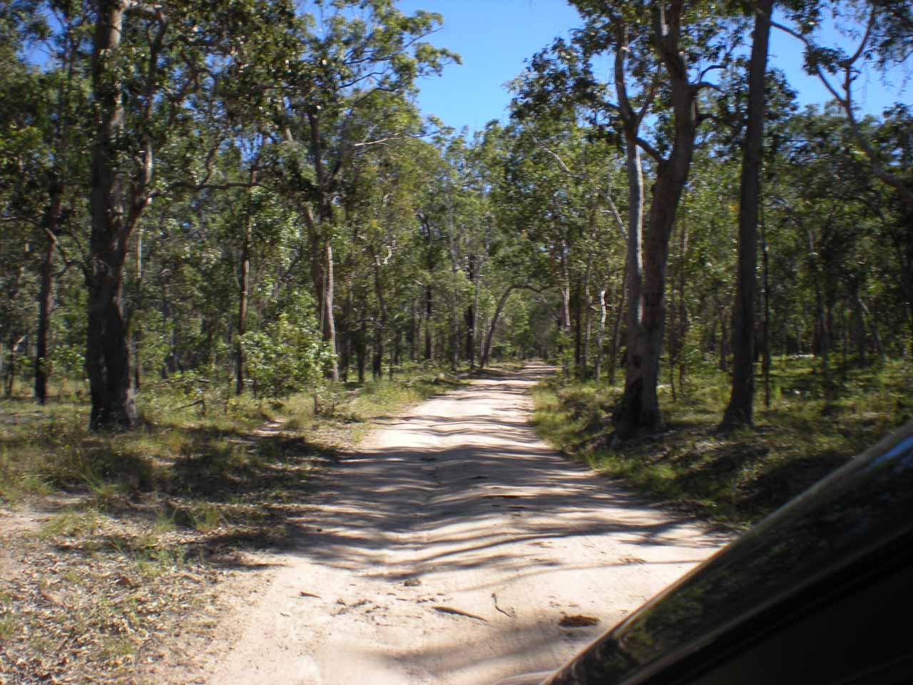 Driving the unmaintained 4wd road to access Blencoe Falls