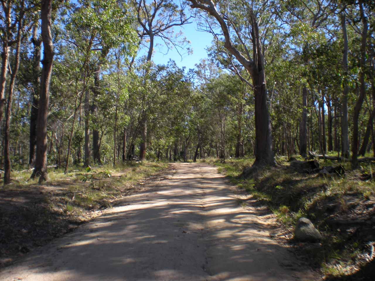 The final 5.2km stretch of road to Blencoe Falls narrowed considerably, but didn't seem too terrible at first