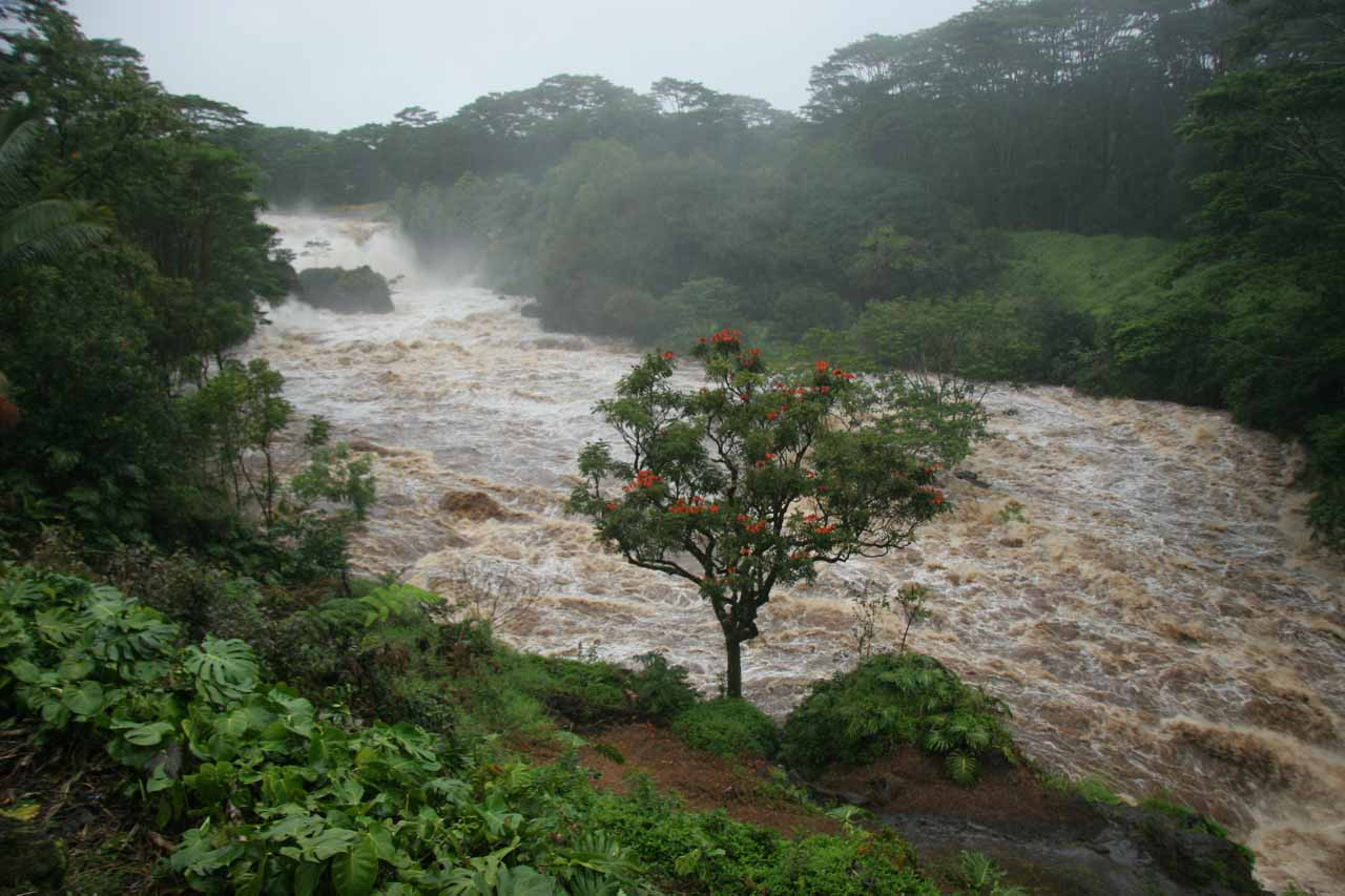 The Wailuku River between Pe'epe'e Falls and Boiling Pots under flooded conditions
