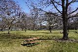 Boise_002_04032021 - At the Julia Davis Park in downtown Boise