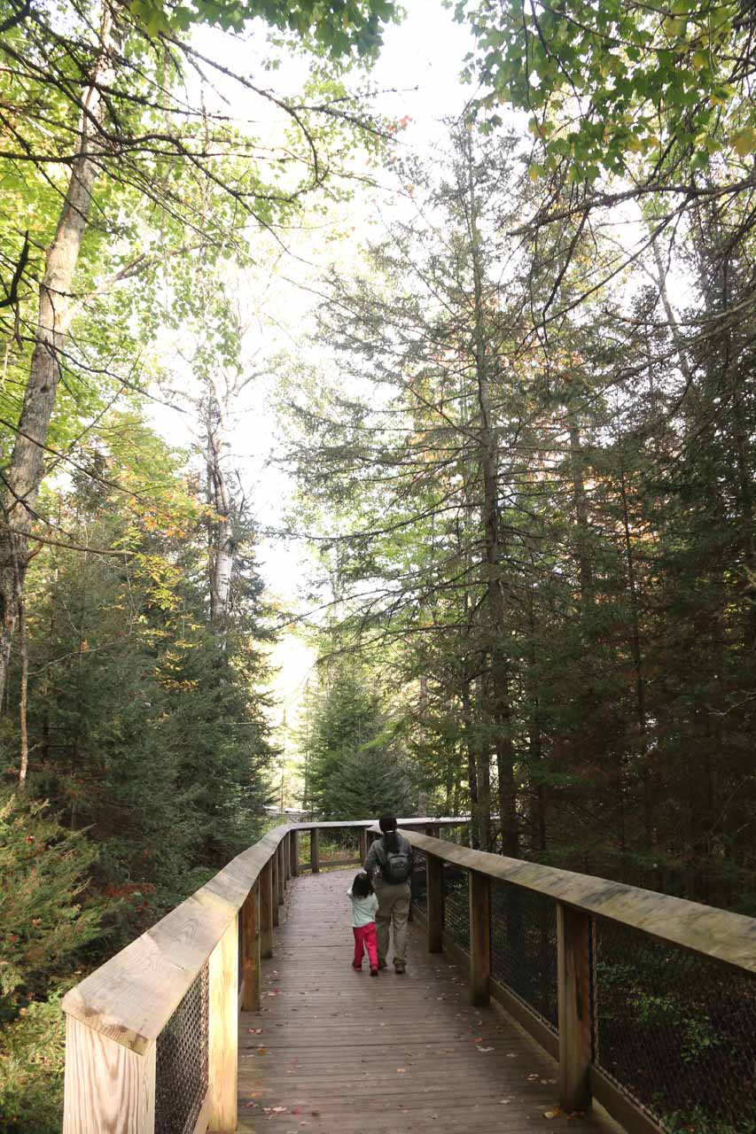 Now the paved trail gave way to the 600ft of boardwalk around Bond Falls