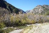 Bonita_Falls_012_01182021 - While looking down towards Lytle Creek, I was quite surprised at how much flow existed even though we were in mid-January. It was almost as if Spring had already arrived two months early!